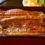 川越でおすすめのうなぎ料理店20選!観光客に人気のお店