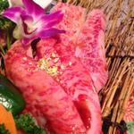 宇佐市でコスパが良くておいしい焼肉店3選!(焼肉ハウスかねだ、炭火焼肉 梨洞、肉の匠八栄福)