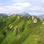 最近行った山小屋や山の茶店のまとめ(八ヶ岳エリアは別のまとめに移しました)