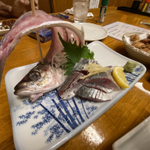 豊橋の居酒屋で楽しく飲むなら!焼き鳥や海鮮料理の人気店15選