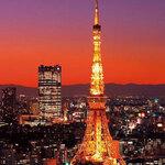 東京の贅沢夜遊び&ちょっと店