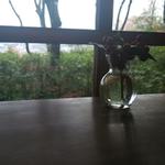 デートで行きたいカフェ&レストラン(付き合い始めたカップル向け) IN関西
