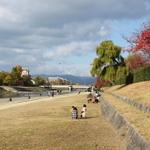 京都リバーサイドカフェ focus on 鴨川