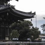 ★奈良観光にオススメ!★古都の雰囲気でゆったりランチ 8選