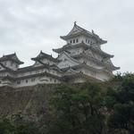 【兵庫】姫路に行くなら絶対に食べたいグルメ