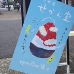 【京都】いま食べたい!和テイストなかき氷まとめ