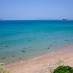 夏は海とスパイス! 糸島に来たらカレー!厳選8選。