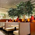 日本橋のおすすめカフェ20選!おしゃれなランチや憩いのひとときに