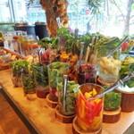 野菜たっぷり!恵比寿のサラダランチ店10選