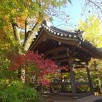 わたしの京都おすすめカフェ10選