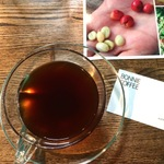 コーヒーは果実!を実感できるカフェ7選 at 東京