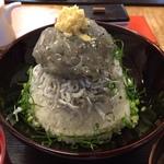 鎌倉でしらすを食べるならココ!鎌倉の絶品グルメ8選