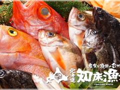 泳ぎイカ 北海道知床漁場 天満店