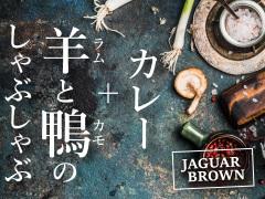 Jaguar Brown