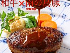 洋食 麦星 by グリル満天星 麻布十番 日本橋髙島屋店