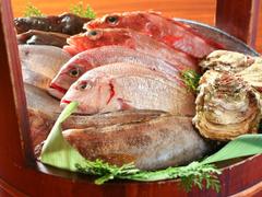 串焼き・魚 新宿宮川 野村ビル店