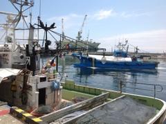 北海道知床漁場 池袋店