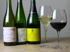 ワイン食堂 Matsu