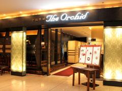 中国料理 The Orchid