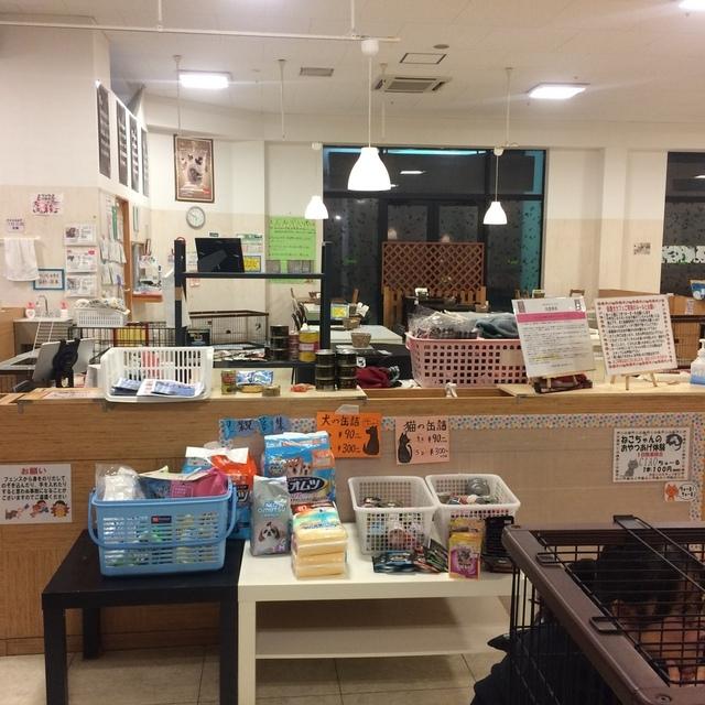 保護犬カフェ ビックホップ印西店 Hogoken Cafe 印西牧の原