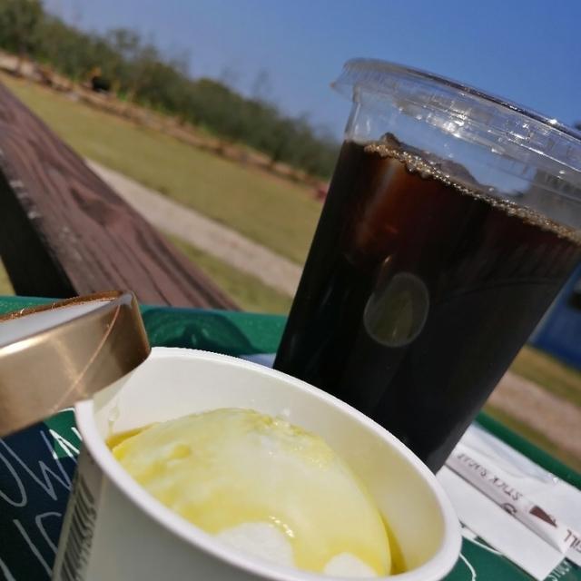 天草オリーブ園 AVILO(アマクサオリーブエン アビーロ) - 五和町その他(その他)の写真(食べログが提供するog:image)