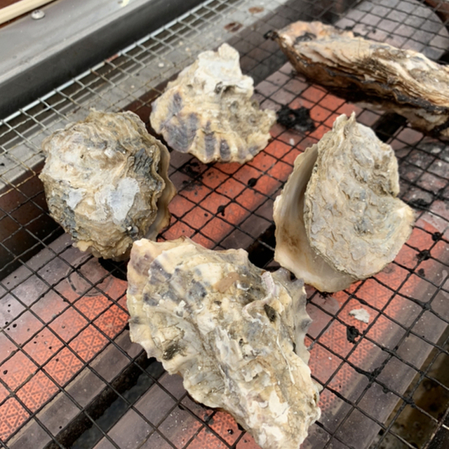 オイスターハウス 牡蠣王 - 住吉(シーフード)の写真(食べログが提供するog:image)