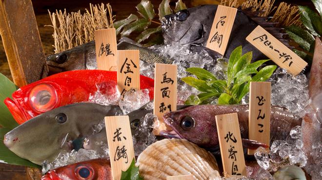 四十八漁場 - メイン写真: