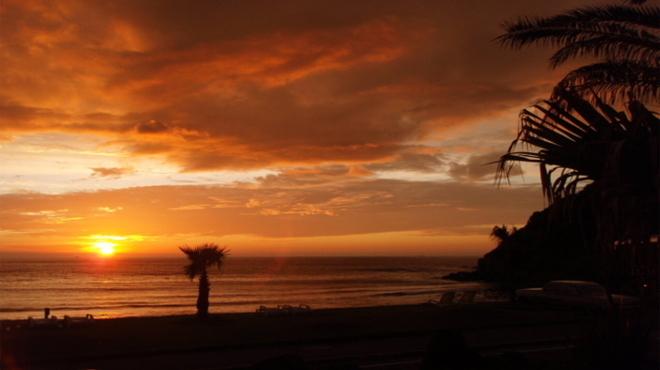パームビーチ - メイン写真: