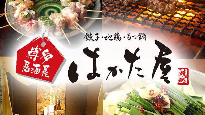 餃子・地鶏・もつ鍋 はかた屋 - メイン写真: