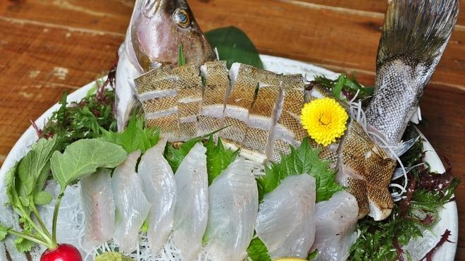 大漁酒場 魚樽本店 - 料理写真:アイナメの姿造り