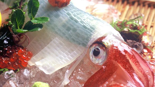 五郎八 - 料理写真:佐賀県呼子産直送『活 やりいかの姿造り』