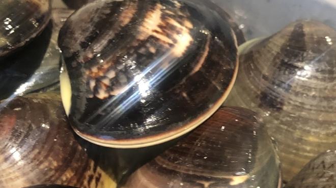 麺ハチイチ/81 NOODLE BAR - 料理写真:千葉三番瀬のハマグリ