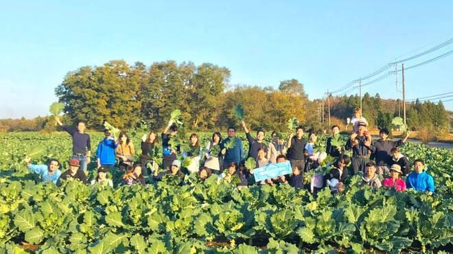 WE ARE THE FARM - メイン写真: