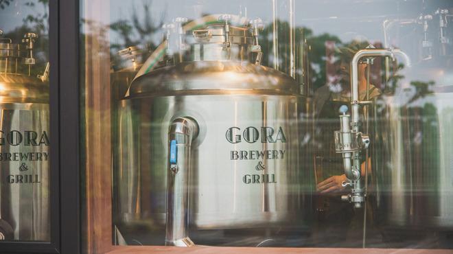 GORA BREWERY & GRILL - メイン写真: