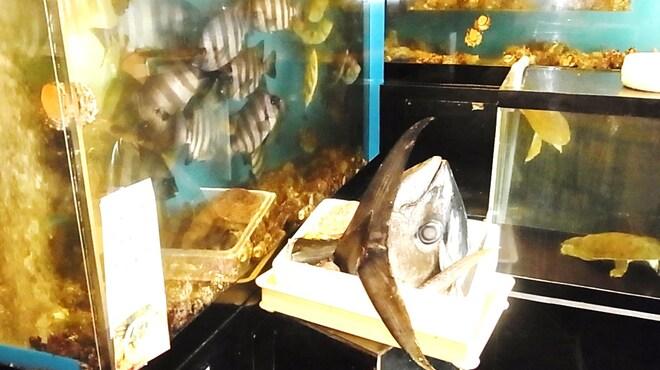 海鮮問屋 博多 - 内観写真:入口には多数の活魚!魚介類の品ぞろえは地元でもトップクラス!