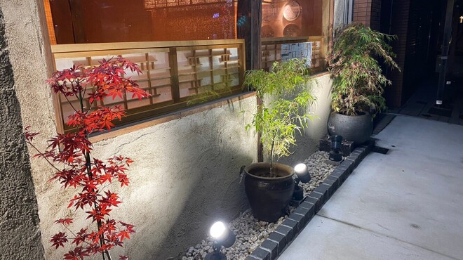 旬菜 さかなと酒 匠海 隠れ家 - メイン写真: