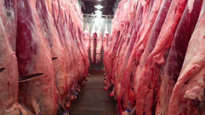 焼肉萬野 - 料理写真:毎日100頭以上の牛から~1頭だけ選び抜いて、お店で使用します。肉質・脂質・霜降りだけでなく、父系の血統や餌の配合内容~生産者の性格まで吟味して「プロの肉屋が自分で食べたい肉!」をご提供します。