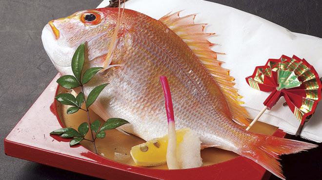 魚庵 千畳敷 - メイン写真: