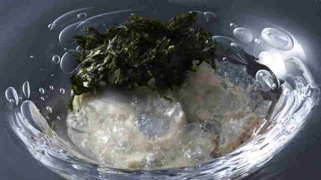 エディション・コウジ シモムラ - 料理写真:牡蠣の冷製 海水と柑橘のジュレ 岩海苔風味