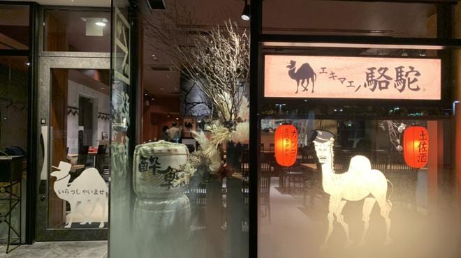 エキマエノ駱駝 - メイン写真: