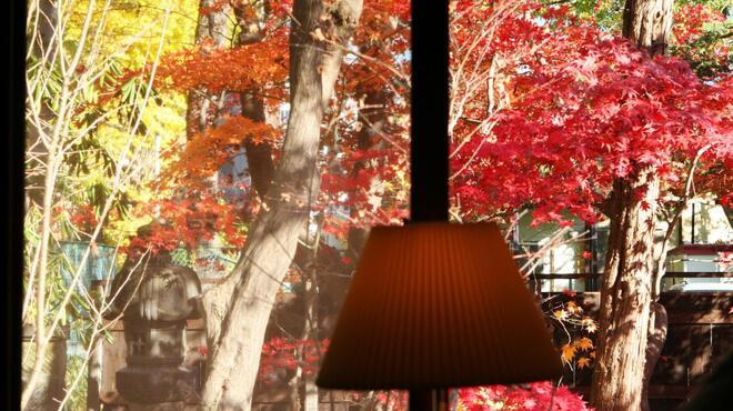 ぶあいそ - 内観写真:季節の移ろいをゆっくりと感じる中庭