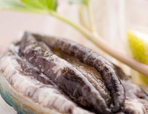 桐壺 - 料理写真:新鮮な海の幸、山の幸を使ったお料理はクチコミでも人気です!