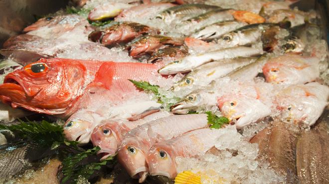 とと家 - 外観写真:ネタケースは新鮮な魚でいっぱい。毎日21時以降はこれらの鮮魚料理が全品半額に!