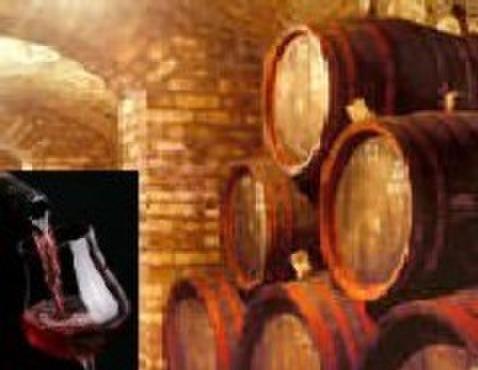 ル・プティ・トノー - 料理写真:当店のみ取り扱いの南仏ワインを豊富にご用意。