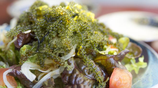 ぱいかじ - 料理写真:さっぱりとした味わいを楽しめる『海ぶどうサラダ』 沖縄の特産品、海ぶどうに自家製ドレッシングをプラス。箸休めにぴったりのヘルシーメニューです。