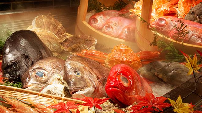 踊る魚 - メイン写真: