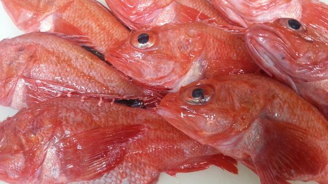 貴楽 魚と野菜 - 料理写真: