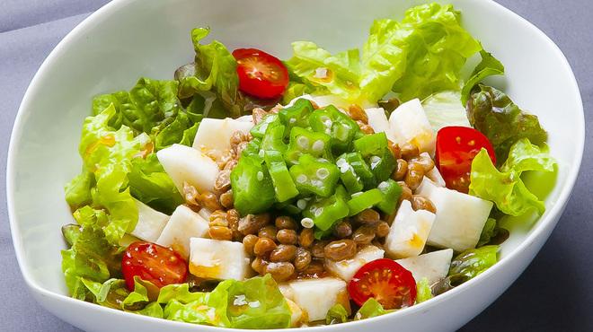 七之助 - 料理写真:ねばねばサラダ
