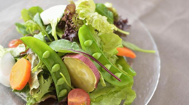 マザームーンカフェ - 料理写真:ガーデンサラダ