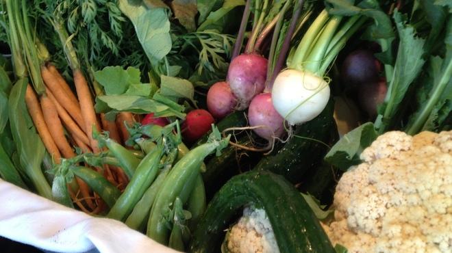 プチ ボヌール - 料理写真:契約農家の有機野菜
